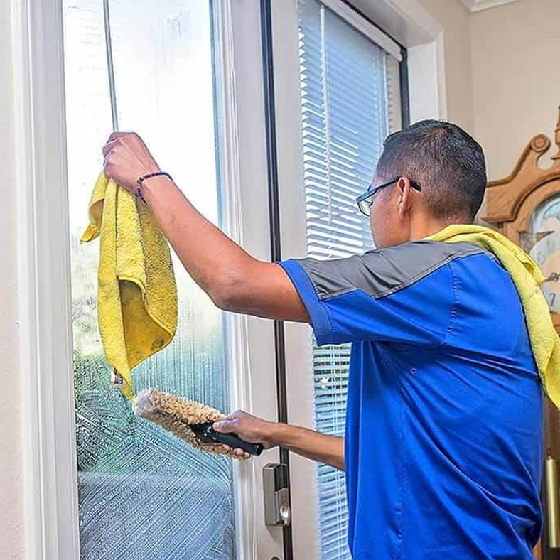 Window Cleaning Squeegee Pro